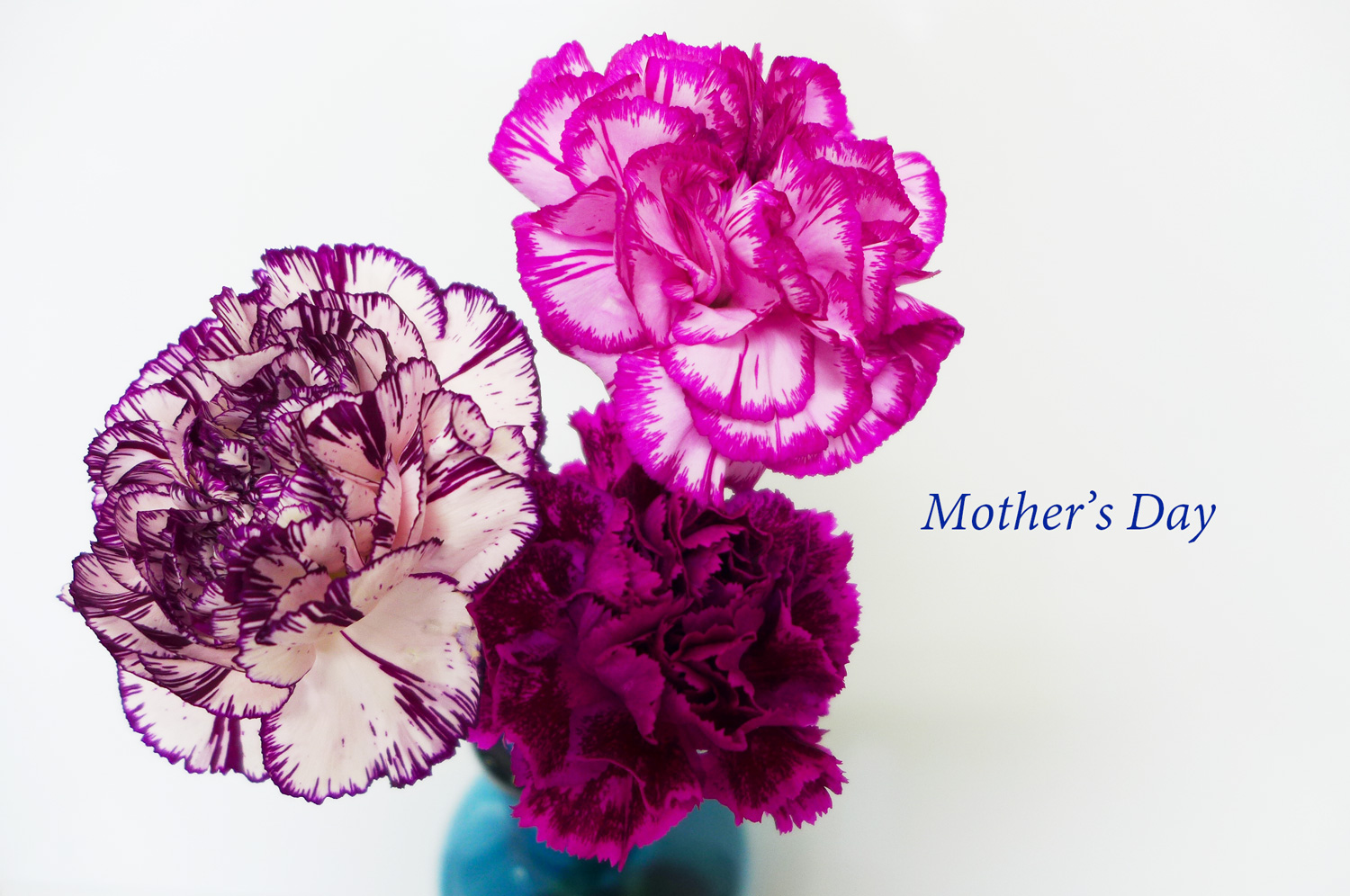 mother s day blog ブログ parqs